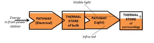 pathway-bulb